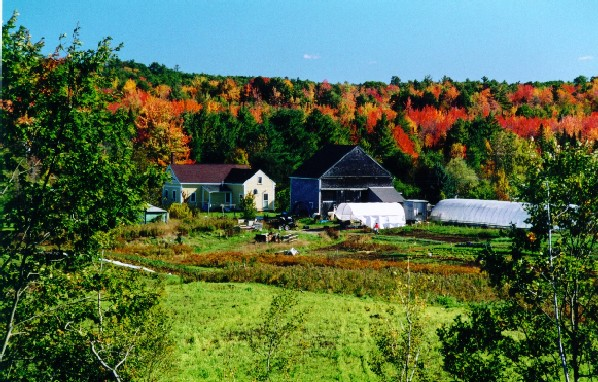Fall Farm 2 Web